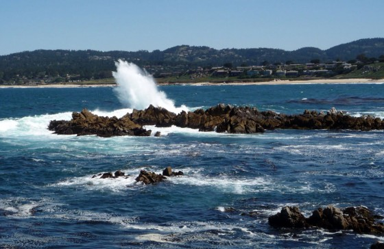 Hiking Point Lobos, a Monterey Bay Gem